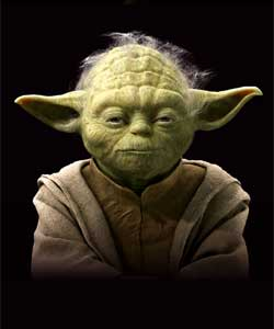 Yoda - Exhibtion picture